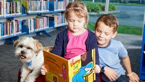 Dogs in libraries programme